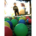 colors balls fun pelotitas colores diversion
