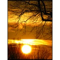 sunset sun tree nature balis barbara