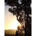 sunrise morning perth hills littleollie