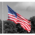 Black and white with focal color...I love doing these types of photos