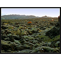 moss nature iceland lava car rocks landscape green soft scenery