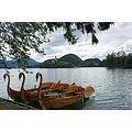 Lake bled boating area