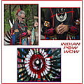 Native American Indians have pow wows  to share their customs and to help educate in a celebrator...