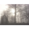 Marsden Park Fog Wishing Gate