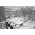 snowstorm nyc city urban bw weather ice building car