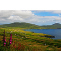St Fenians Bay Ballinskelligs Co Kerry Ireland Peter OSullivan