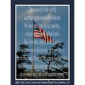 declaration sentiments garrison patriotism flag chimney rock park human