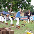 sportfriday woodchopping kelmscott perth western australia littleollie