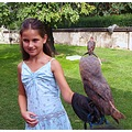 bird child garden castle Prague Bohemia