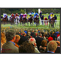 Horceracing Listowel Kerry Ireland National Hunt
