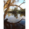 reflectionthursday swan river early morning