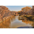 autumn fall foliage winnipeg canada seineriver