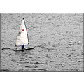 sail boat sailor yacht sea