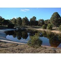 reflectionthursday pond whiteman park perth littleollie