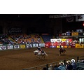 texas fort worth rodeo