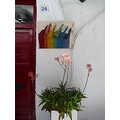 door colour paintbrushes