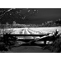 Blackandwhite BW snow landscape light