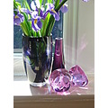 iris purple glass shadows