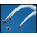 stlouis missouri us usa STL airshow RedBaron airplanes precision flight bh 2007