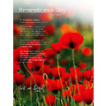REMEMBRANCEDAY lestweforget FLANDERSFIELDS
