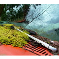 reflectionthursday windshield wiper moss