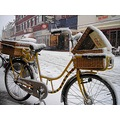 snow bike bicycle