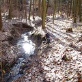winter snow nature forest stream bohemia