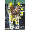 Soboba Powwow Pankey Wildspirit Portrait Indian Regalia