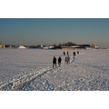 walk people sea ice helsinki sun noon
