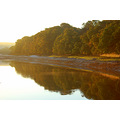 mirrorfriday river torridge