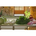 France vegetables summer salad house table