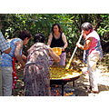 Paella San_Juan Alora Andalucia home Spain Canon Powershot SX10IS June 2010