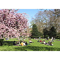 Lincolns Inn Fields London Yesterday