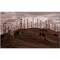 landscape technology Calif sepia
