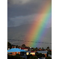 rainbow dunedin city nz littleollie