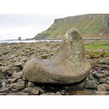 Giants Boot Giants Causeway