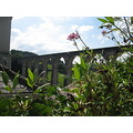 cobweb bridge calstock