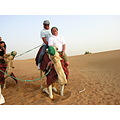 camel desert people