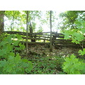 old fence in the backyard