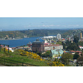 CHILE   ---  PUERTO MONTT 17   ----   OVERLOOKING THE CITY