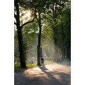 Holland Amsterdam Vondelpark Summer Evening