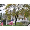 veterans day in paradise california american flags