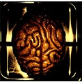 brain composition imagination abstract artificial concept keitology keit