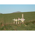 Don't let this be your legacy. Six crosses by the side of the road near Clinton in South Otago, N...