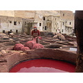tanneries de fes couleurs