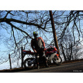 2005 Honda CBR 1000RR Fireblade