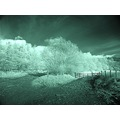 winterhill Bolton infrared