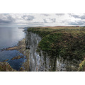 Bempton Cliffs Yorkshire Coast