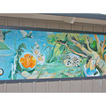 lake merritt lakemerritt oakland art science mural lakemerrittfph3