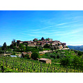 Fantastic little village, down below the wineyard of Montefioralle.